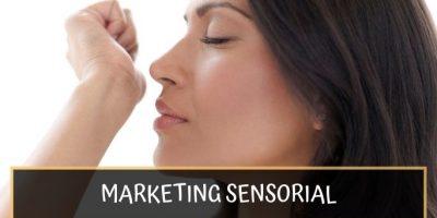 Marketing Sensorial: Cómo crear una atmósfera comercial para vender